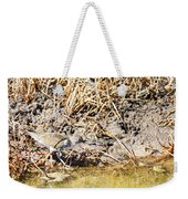 Spotted Sandpiper At The Canal Weekender Tote Bag