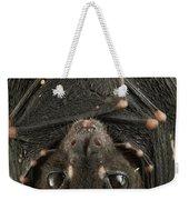 Spotted-winged Fruit Bat Balionycteris Weekender Tote Bag
