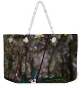 Spotted Wintergreen Plants Weekender Tote Bag
