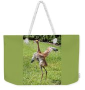 Spread Your Wings And Try To Fly Weekender Tote Bag