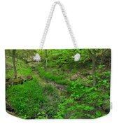 Spring At Cleveland Metro Park Weekender Tote Bag