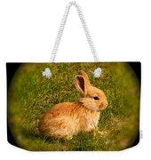 Spring Bunny Weekender Tote Bag