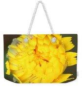 Spring Chick Weekender Tote Bag