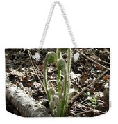 Spring Forest Fern Weekender Tote Bag