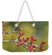 Spring Leaves Greeting Card Blank Weekender Tote Bag
