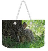Spring Rabbit Weekender Tote Bag