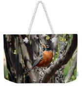 Spring Robin Weekender Tote Bag
