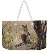 Squirrel And Cone Weekender Tote Bag