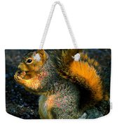 Squirrel At Riverfront Park Weekender Tote Bag