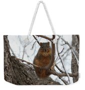 Squirrel Eating In The Frost Weekender Tote Bag