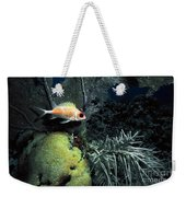 Squirrel Fish Weekender Tote Bag