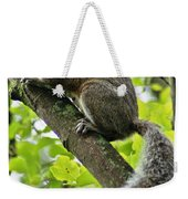 Squirrel IIi Weekender Tote Bag