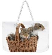 Squirrels In A Basket Weekender Tote Bag by Mark Taylor