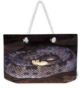 St. Lucia Pit Viper Weekender Tote Bag