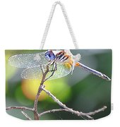 Stained Glass Inspiration Feminine Weekender Tote Bag