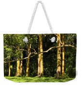Stand Of Rainbow Eucalyptus Trees Weekender Tote Bag