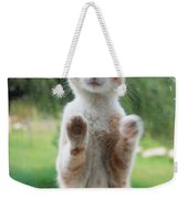 Standing Cat Weekender Tote Bag