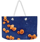 Staphylococcus Aureus Bacteria Weekender Tote Bag