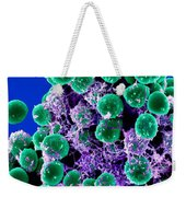 Staphylococcus Epidermidis Bacteria, Sem Weekender Tote Bag by Science Source