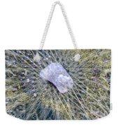 Star Hip 53550  Weekender Tote Bag by Augusta Stylianou