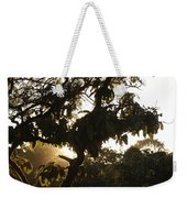 Stem And Leaves Outlined By The Shine Of Sunrays Weekender Tote Bag