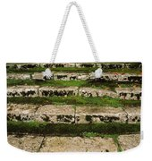 Steps On The Central Walk, Lismore Weekender Tote Bag