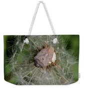 Stink Bug On Dandelion Seed Head Weekender Tote Bag