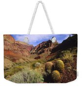 Stonecreek Canyon In The Grand Canyon Weekender Tote Bag
