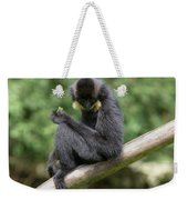 Stopping For Lunch Weekender Tote Bag