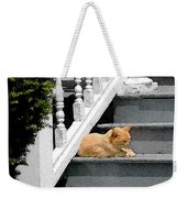 Stratford Cat Nap Weekender Tote Bag