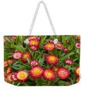 Strawflower Helichrysum Sp Red Variety Weekender Tote Bag