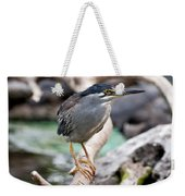 Striated Heron Weekender Tote Bag