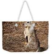Strike A Squirrelly Pose Weekender Tote Bag
