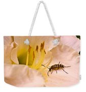 Striped Beetle On Lilly 1 Weekender Tote Bag
