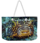 Striped Burrfish On Caribbean Reef Weekender Tote Bag