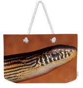 Striped Lateral Fold Lizard Weekender Tote Bag