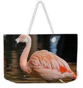 Strolling Flamingo Weekender Tote Bag