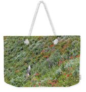 Subalpine Wildflowers Weekender Tote Bag