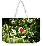Succulent's Ruby Weekender Tote Bag
