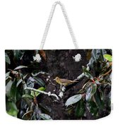 Summer Tanager Lady Weekender Tote Bag