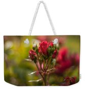 Sun In The Garden Weekender Tote Bag