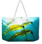 Sun Shines Through Bull Kelp Weekender Tote Bag