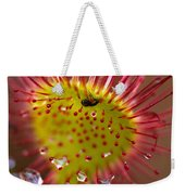 Sundew With Digested Food, British Weekender Tote Bag
