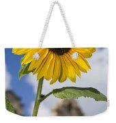 Sunflower In Balboa Park Weekender Tote Bag