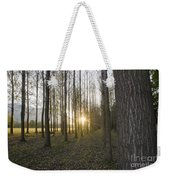 Sunlight In The Forest Weekender Tote Bag