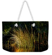 Sunlight On Grass Merritt Island Nwr Weekender Tote Bag