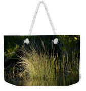 Sunlight On Grass Original Weekender Tote Bag