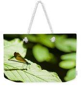 Sunlit Dragonfly Weekender Tote Bag
