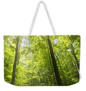 Sunny Forest Path Weekender Tote Bag