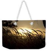 Sunset Behind Tall Grass Weekender Tote Bag